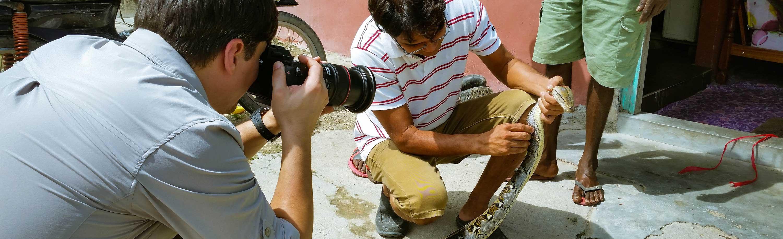 Investigative Filmproduktion zum Thema Phython
